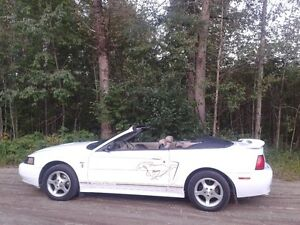 2001 Ford Mustang Cheval or Coupé (2 portes)