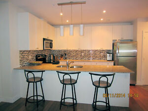 Upscale Uptown Fully Furnished 2 BED,2 BATH,RED CONDO April 1