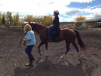 Volunteers: Opening Gaits Therapeutic Riding Society of Calgary