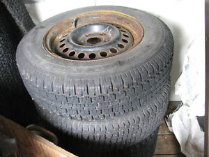 Cavalier Rims with Studded Tires