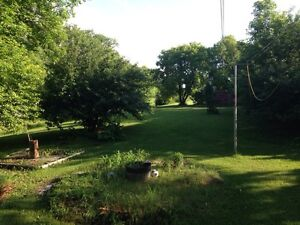 House for rent 1.5 acre lot
