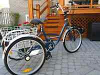 MOTORIZED NORCO 5 SPEED TRICYCLE PRICE REDUCED NOW $499.0