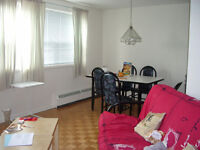 Looking for female roommate - apt downtown available Dec 18