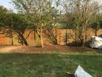 Grass cutting Hedge cutting Gardening-Gardener-Garden service | Tree surgery | Turfing | Landscaping