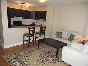 Fully Furnished one bedroom for rent