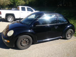 VW Beetle - Winter Tires Installed - Cheap Insurance