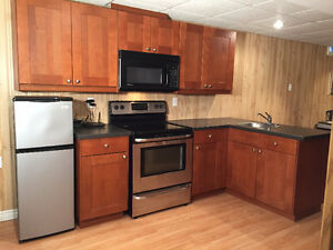 Basement Kitchenette - Cabinets, Countertops and Microwave,