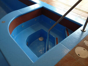 POOL Painting and repair concrete Commercial and Residential Kitchener / Waterloo Kitchener Area image 7