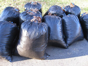 take your bagged leaves to landfill Regina Regina Area image 1