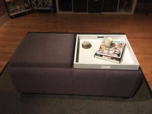 Moving Sale! - Casalife ottoman / coffee table / storage bench