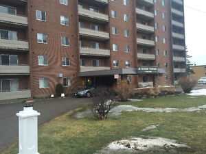 Nicely renovated condo for rent in beautiful Perth Ontario