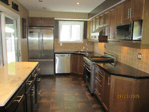A Home out of the Ordinary! Kitchener / Waterloo Kitchener Area image 6