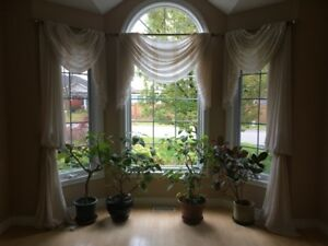 Mixed Curtains and Drapes