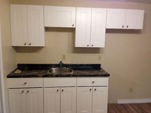 Renovated All Inclusive Bachelor, 1 & 2 Bedroom Units Downtown