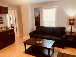 Very Nice & Cozy 1 Bedroom Full Furnished 1 Bdrm Apt Downtown