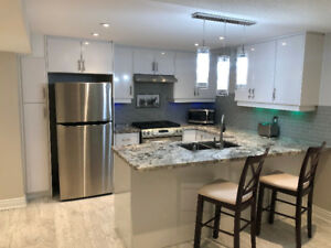 Bright, fully furnished basement in Richmond Hill