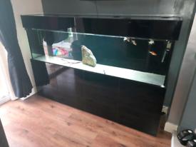 7 ft fish tank