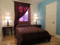 Beautiful room / Superbe chambre - Petite Patrie - Available NOW