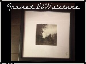Black and White Small Framed Picture
