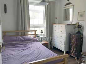 Stunning room avaliable in Rodney House
