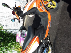 Scooter chironex chase