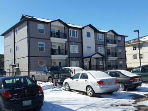 New Premier condo for rent $850 per month with flexible terms