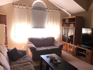 2 Light Brown Couches - new price! Kitchener / Waterloo Kitchener Area image 5