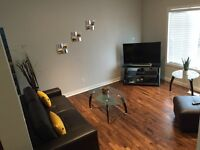 Fully Furnished New 3 bedroom Home!!!