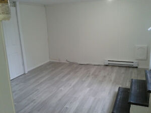 NEWLY RENOVATED 1-bedroom Lower Level Apartment in Downtown Kitc