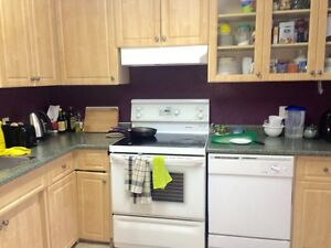 Clean House ALL Utilities/Internet/On site Laundry/Parking Incl.
