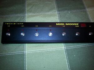 Midi Moose