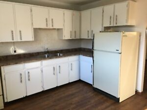 Brand New Reno 1 Bedrm Bsmt Apartment In Prime Area FW!