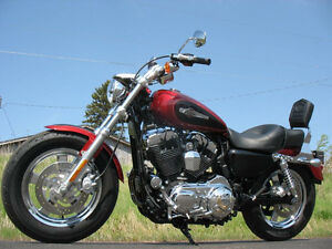 HD Sportster 1200 Custom
