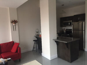 Modern One-Bedroom in the Heart of Downtown Kingston