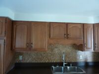 Oak Kitchen cabinets, counter and double stainless sink