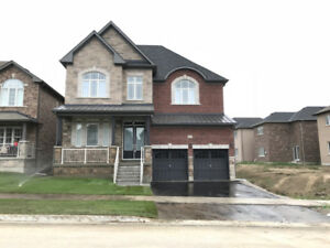 House for Rent in Bradford West Gwillimbury Ontario