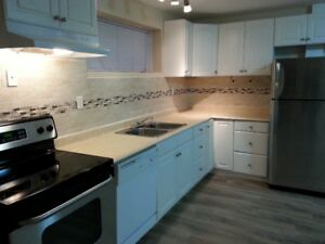 Newer Clean 1 Bedroom suite in Dallas  (10 minutes to downtown)