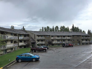 Free Rent with 6 Month Lease!!! Apartment for rent in Hinton Edmonton Edmonton Area image 15