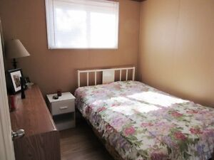 Cabin on Country Pond Road in Bay Roberts - MLS 1135752 St. John's Newfoundland image 6