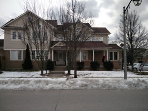Brock / Taunton 4+1 bedrooms house for rent