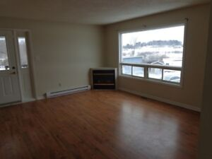 Really Nice One Bedroom Apartment