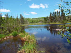 188 Acres Hunting property for sale chemin Rang A otter Lake,QC