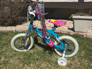 Childs supercycle bike