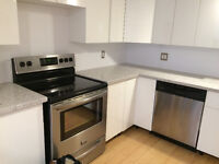 bright and clean, recently renovated-2 bedroom