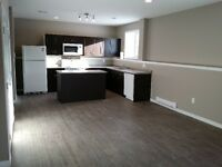 1 bed legal suite in rosewood