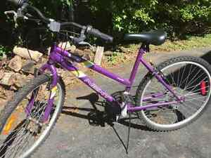 "Girl's 24"" 6 speed Bike"