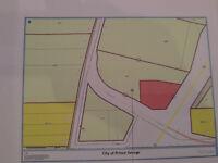 4.87 Acres HWY Commercial & AF Corner Foreman RD HWY 16