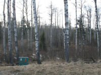 Sundre Acreage 2.97 Acres Near Burnstick Lake