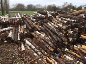 Dried Firewood for Sale