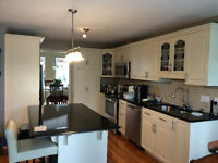 KITCHEN CABINET * PAINTING * REFINISHING PROFESSIONAL